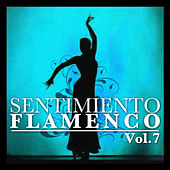 Sentimiento Flamenco Vol.7 by Various Artists