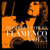 Hombres por el Flamenco Vol.3 by Various Artists