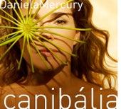 Play & Download Canibalia by Daniela Mercury | Napster