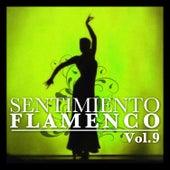 Sentimiento Flamenco Vol.9 by Various Artists
