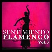 Sentimiento Flamenco Vol.3 by Various Artists