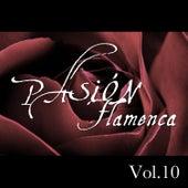 Pasión Flamenca Vol.10 by Various Artists