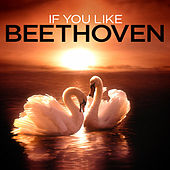 Play & Download If You Like Beethoven by Various Artists | Napster