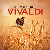 Play & Download If You Like Vivaldi by Various Artists | Napster