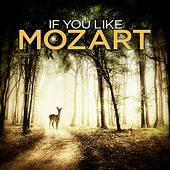 If You Like Mozart by Various Artists