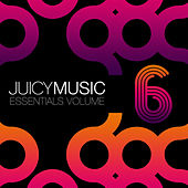 Juicy Music Essentials 6 by Various Artists