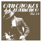 Cantaores del Flamenco Vol.14 by Various Artists