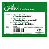 Play & Download Another Day (Osunlade Remixes) by Fertile Ground | Napster
