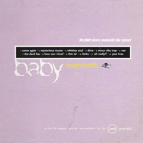 10,000 Years Beneath The Street by Baby Mammoth