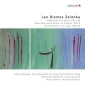 Play & Download Zelenka: Magnificat - Missa Nativitatis Domini - Dixit Dominus by Markus Flaig | Napster