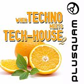 When Techno Meets Tech-House Vol. 2 by Various Artists