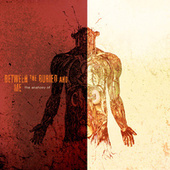 The Anatomy Of by Between The Buried And Me