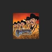 Purros Corridos Originales by Los Originales De San Juan