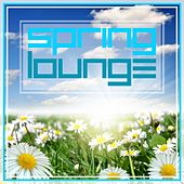 Play & Download Spring Lounge by Various Artists | Napster