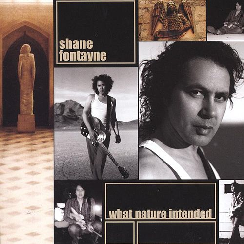 Play & Download What Nature Intended by Shane Fontayne | Napster