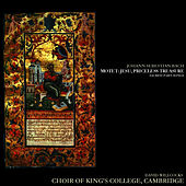 Play & Download Bach: Motet; Jesu, Priceless Treasure, Sacred Part-Songs by Choir of King's College, Cambridge | Napster