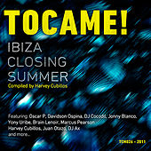 Play & Download Ibiza Closing Summer by Various Artists | Napster