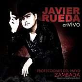 Play & Download Protecciones del Mayo Zambada (En Vivo) by Javier Rueda | Napster