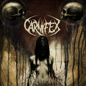 Until I Feel Nothing by Carnifex
