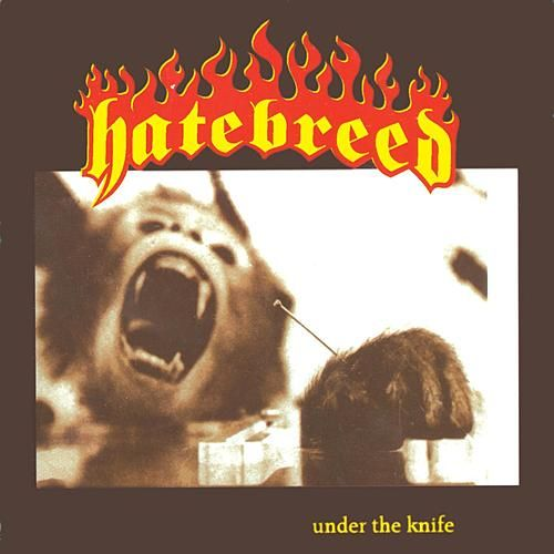 Under The Knife von Hatebreed