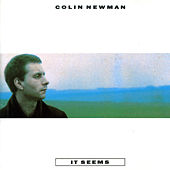 It Seems by Colin Newman