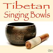 Play & Download Tibetan Singing Bowl by Tibetan Singing Bowl | Napster