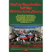 Play & Download Auf'm Tanzboden bei der Wirtin by Various Artists | Napster