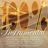 100% Instrumental by Various Artists