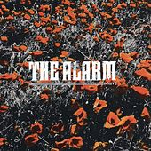 Play & Download In The Poppy Fields by The Alarm | Napster