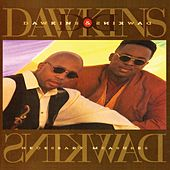 Play & Download Necessary Measures by Dawkins & Dawkins | Napster