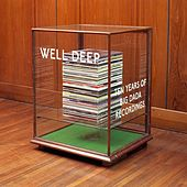 Play & Download Well Deep: 10 Years of Big Dada by Various Artists | Napster