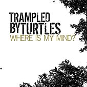 Where Is My Mind - Single by Trampled by Turtles