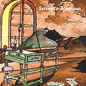 Play & Download Serenata italiana, vol. 20 by Various Artists | Napster