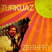 Play & Download Zerbert by Turkuaz | Napster
