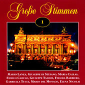 Grosse Stimmen Vol. 1 by Various Artists