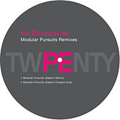 Modular Pursuits Remixes by Carl Craig