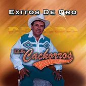 Play & Download Exitos De Oro by Los Cachorros de Juan Villarreal | Napster