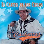 Play & Download El Cartel De Los Cielos by Los Cachorros de Juan Villarreal | Napster