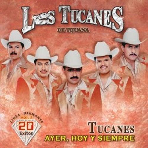 Play & Download Ayer, Hoy y Siempre Vol.3 by Los Tucanes de Tijuana | Napster