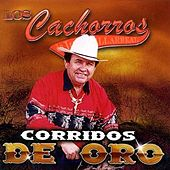 Play & Download Corridos De Oro by Los Cachorros de Juan Villarreal | Napster