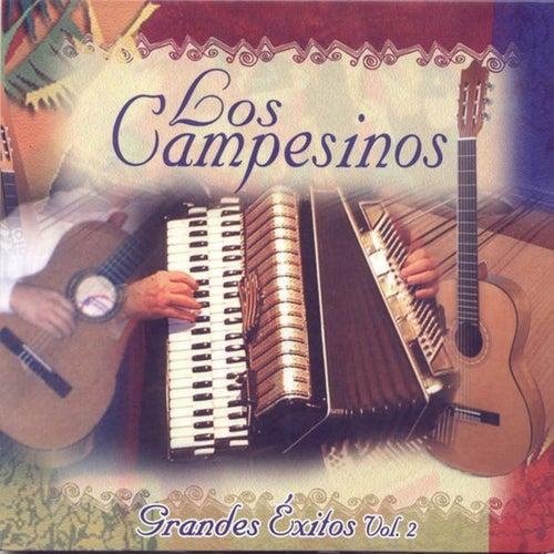 Los Campesinos: Grandes Exitos, Vol. 2 by Los Campesinos!