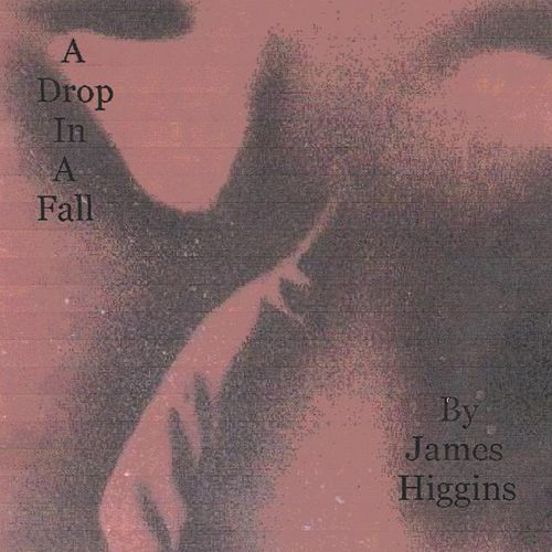 A Drop in a Fall by James Higgins