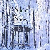 Play & Download Silent Snow by Tierney Allen | Napster