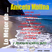 Play & Download Lo Mejor De by Aniceto Molina | Napster