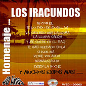 Play & Download Homenaje by Los Iracundos | Napster