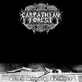 Play & Download Black Shining Leather by Carpathian Forest | Napster