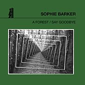 A Forest / Say Goodbye by Sophie Barker