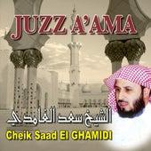 Juzz a'ama  - Quran - Coran - Récitation Coranique de Cheik Saad El-Ghamidi