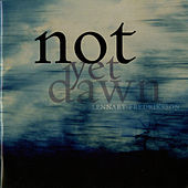 Fredriksson: Not Yet Dawn by Various Artists