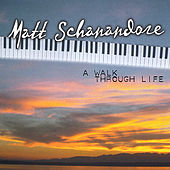 A Walk Through Life by Matt Schanandore